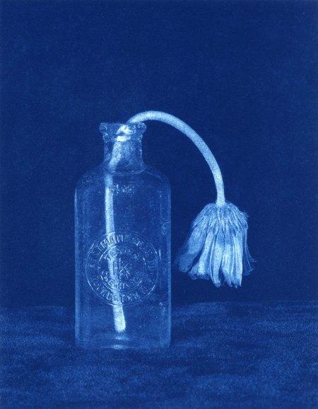 Sockloff Cyanotype--Aging Alone