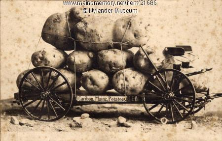 Joke photograph promoting Aroostook County Potatoes, Caribou, ca. 1922 Item 21686 - Joke photograph promoting Aroostook County Potatoes, Caribou, ca. 1922     Contributed by Nylander Museum